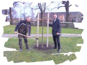 Read more about the article Ein Baum für Gatersleben