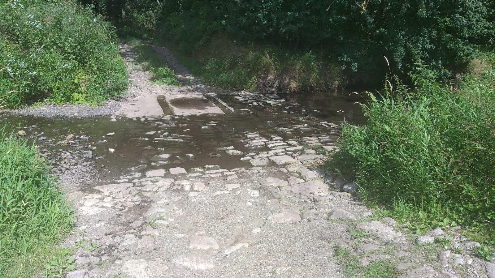 Selke wieder (fast) ohne Wasser – Wasserentnahmeverbot