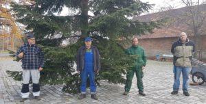 Er steht – Unser Weihnachtsbaum. Vielen Dank an die (coronabedingt) wenigen Helfer! – Bildergalerie