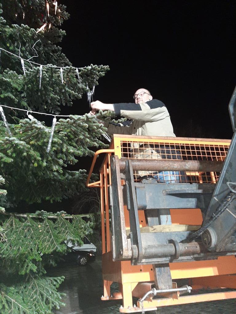 Unser Weihnachtsbaum auf dem Bäckerteich – Fotogalerie