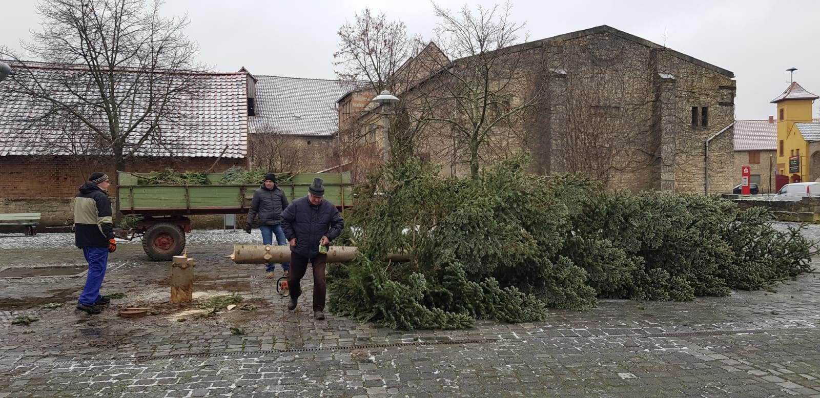 Abbau vom Weihnachtsbaum 2020